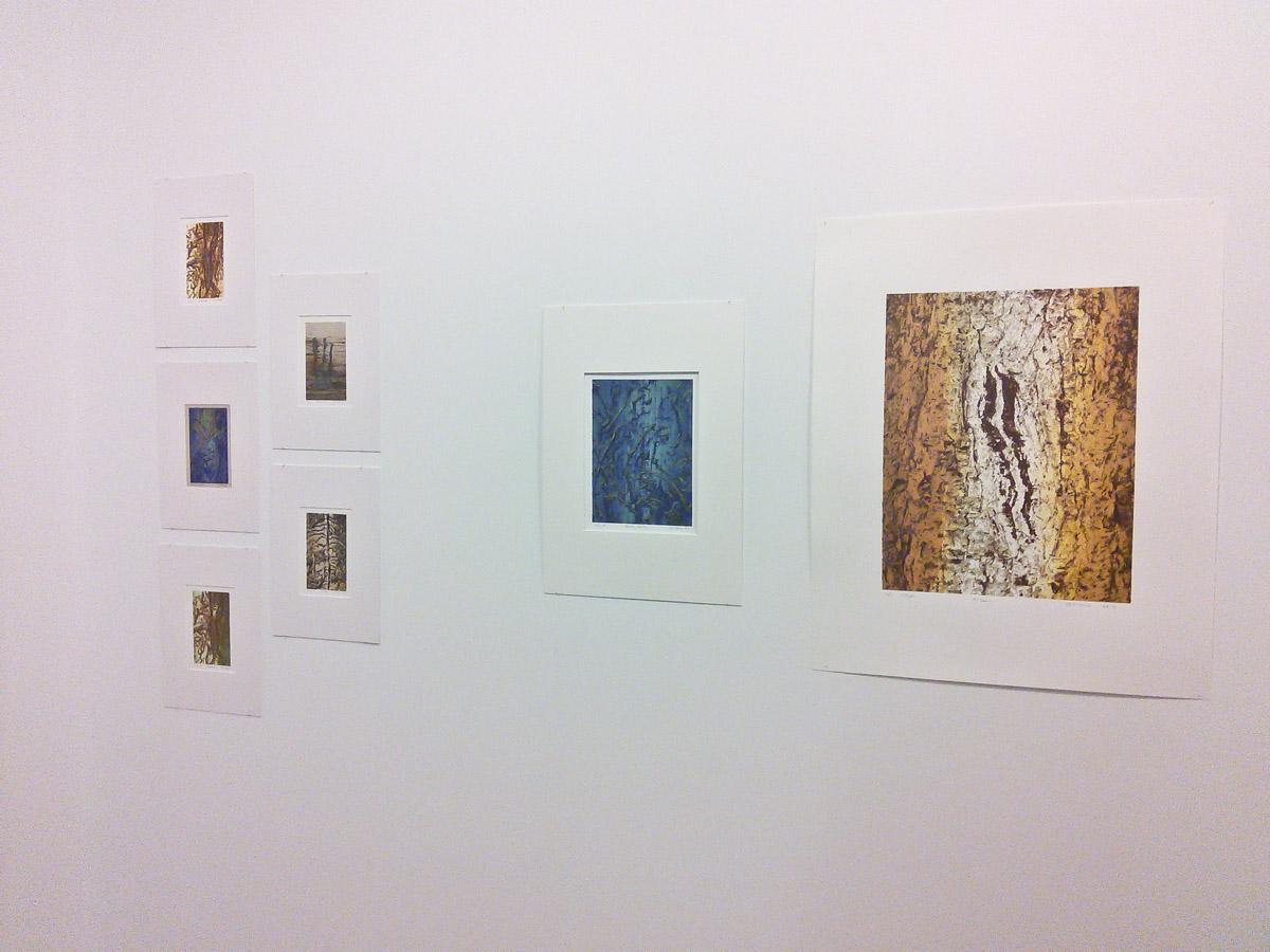 Silkscreened beetle galleries & bark textures by Bill Horne.